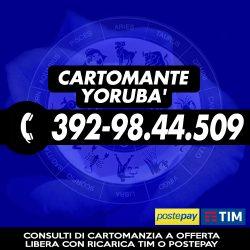 cartomante-yoruba-tim-567