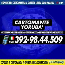 cartomante-yoruba-tim-563