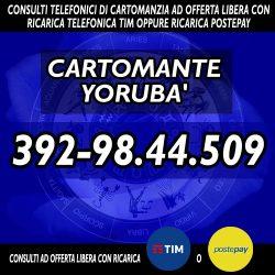 cartomante-yoruba-tim-847