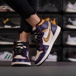 Air Jordan 1 Retro High OG x Nike SB7